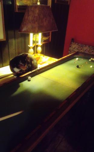 Victorian Bagatelle, With Referee!